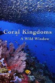 Watch Full Movie :Wild Window: Coral Kingdoms (2016)